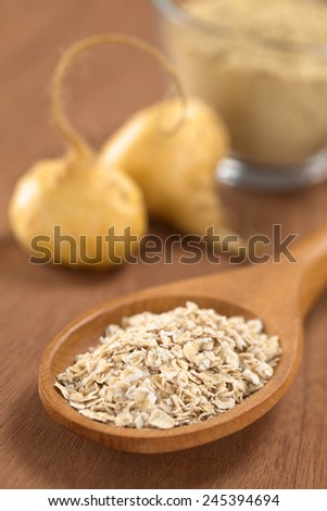 Oatmeal mixed with powdered maca or Peruvian ginseng (lat. Lepidium meyenii) on wooden spoon with fresh maca roots and maca powder (flour) in back (Selective Focus, Focus in the middle of the oatmeal) - stock photo