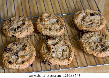 Oatmeal raisin cookies on cooling rack fresh from oven. - stock photo