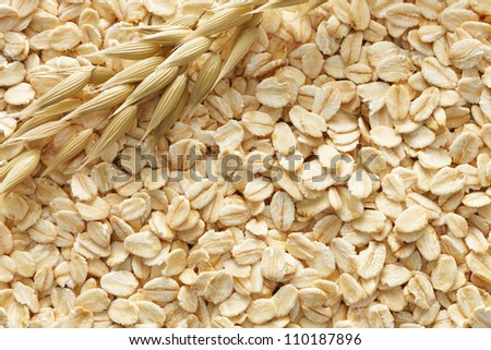 oatmeal with its cereal plant as background