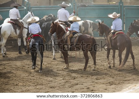 OAXACA, MEXICO. DECEMBER 20, 2015. charros moving the bulls as part of the preparations for the  Charreria Mexican National Sport