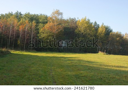 Observation Point at the Edge of Forest - stock photo
