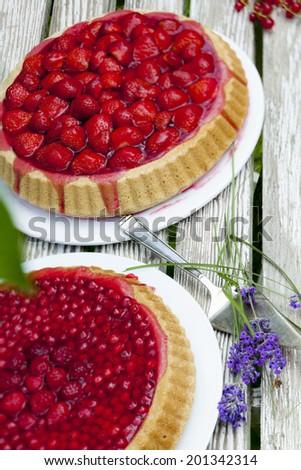 Obstkuchen auf Gartentisch - stock photo