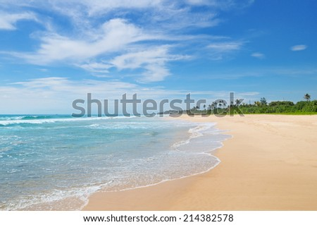 ocean and coconut palms on the shore - stock photo
