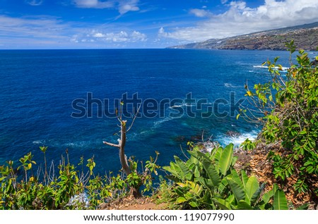 Ocean coast view banana clouds blue sky, Puerto de la Cruz, Tenerife, Canary Islands - stock photo