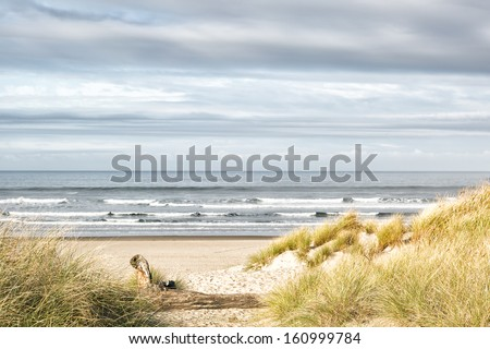 Ocean, grassy dunes and sandy beach on a gray day. Beautiful muted colors. Copy space. - stock photo