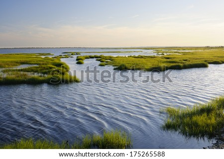 Ocean Inlet with Marsh Grass - stock photo