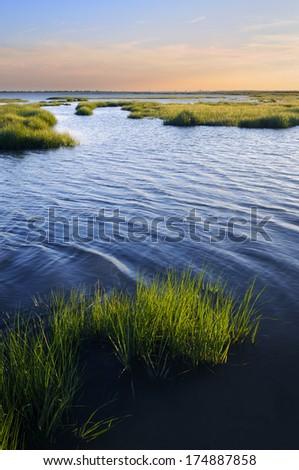 Ocean Inlet with Salt Marsh Grasses - stock photo