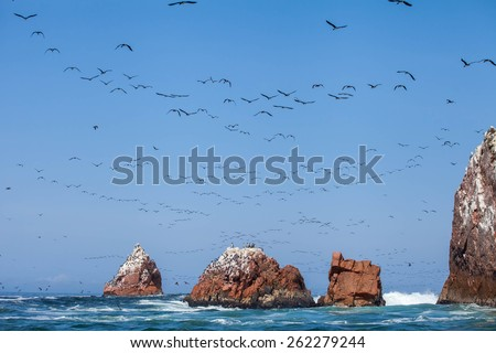 Ocean Pacific in the Ballestas island, Perù. Hundreds of birds fly over the rocks, between the waves of the sea, with blue sky background - stock photo