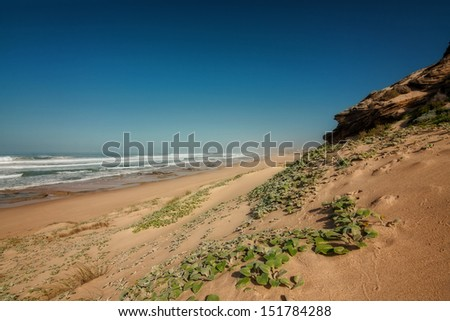 ocean shoreline with grassed sand dune shrub, surf and summer sky - stock photo
