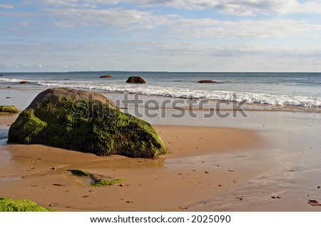 Ocean shoreline with large seaweed-covered rock in the foreground. - stock photo