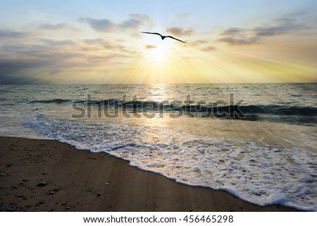 Ocean sunset rays is an ethereal ocean setting with sun beams bursting forth as a single soul moves toward the light and an ocean wave gently comes to shore.