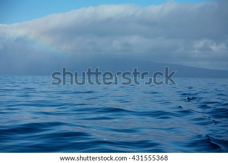 Ocean surface/ waves background/ lonely boat / rainbow - stock photo