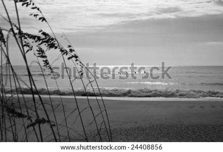 ocean view complete with sea oats, and pelicans skimming the water - stock photo