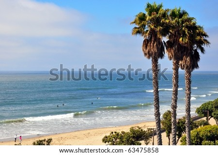 Ocean view with palm trees and promenade