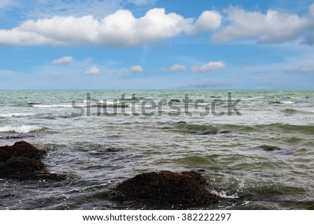 Ocean waves that lapped toward shore.