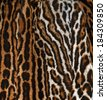 ocelot real fur background - stock photo