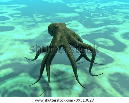 octopus  at the bottom of the sea - stock photo