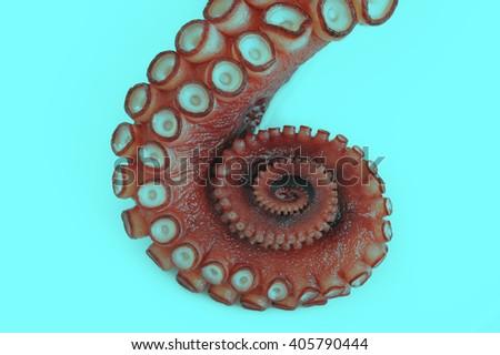 Octopus - tentacle - art - stock photo