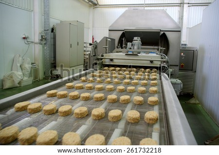Odessa, Ukraine - July 7, 2007: The factory for the production of food from natural Ingredients. Food Convenience food. Production of dumplings, pancakes. Preparation of filling. Motion Blur. - stock photo