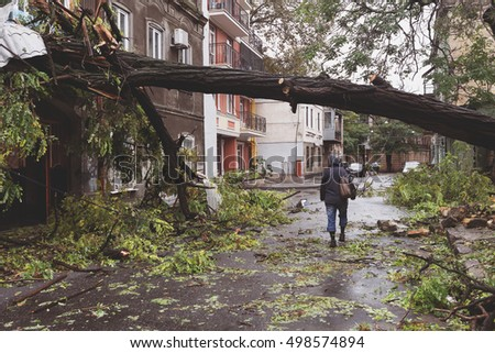 Odessa, Ukraine - October 12, 2016: Hurricane CHRISTIE. Heavy rain and gale - force gusts of wind caused accident - old tree during storm fell on car and destroyed house. Strong storm with rain