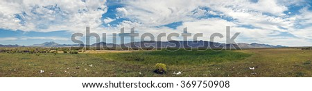 Off of Highway 447 in Nevada, an old pasture filled with cattle bones.  - stock photo