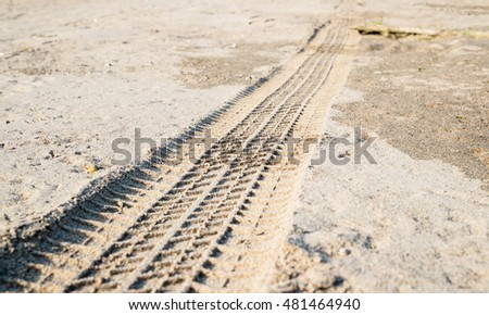Off road car tyre track on sandy beach