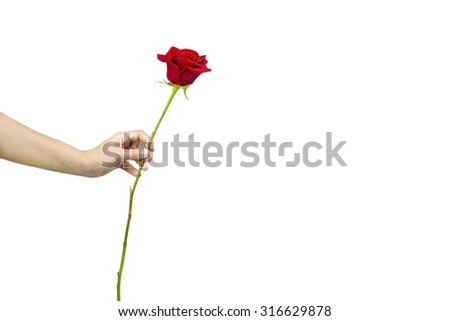 Offering a red rose
