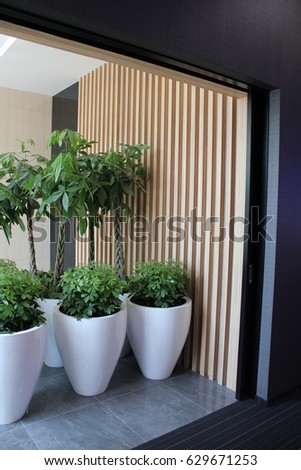Office Interior, Indoor Plants In Large White Pots