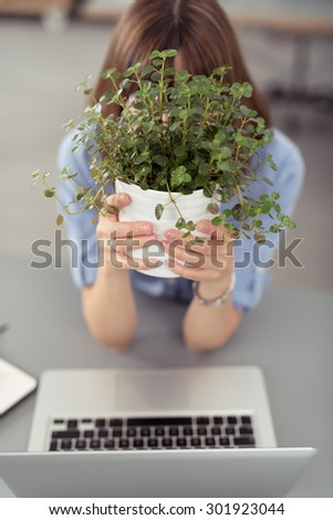 Office Woman Covering her Face with Small Green Plants in a Vase While Sitting at her Desk with Laptop Computer. - stock photo