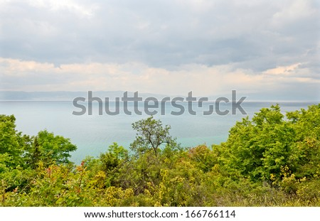 OHRID, MACEDONIA, MAY 18, 2011. A forest on the shore of lake Ohrid.  - stock photo