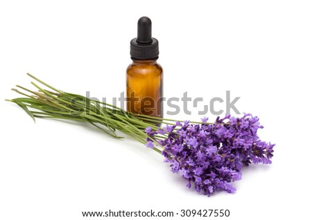 oil essence bottle and lavender flowers on white background - stock photo