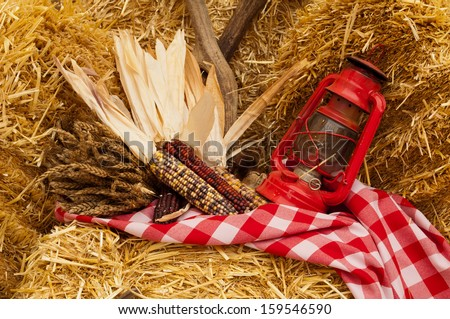 Oil lantern and ears of corn on a red and white checkered tablecloth over hay bales. - stock photo
