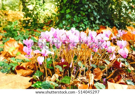 Oil painting illustration. Beautiful pink Cyclamen blossoms in garden at Chateau de Chenonceau(Chenonceaux) royal medieval french castle, Loire Valley. France.