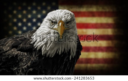 Oil painting of a majestic Bald Eagle against a photo of a battle distressed American Flag.