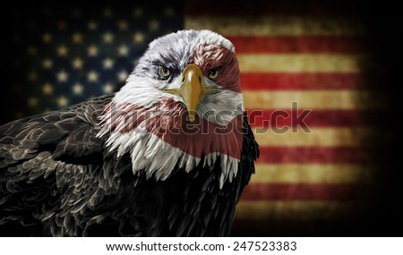 Oil painting of a majestic Bald Eagle with the USA flag across it's face against a photo of a blurry, battle distressed American Flag.