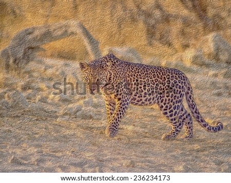 Oil Painting of young male leopard