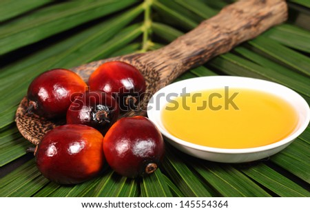 Oil palm fruits and a plate of cooking oil on leaves background
