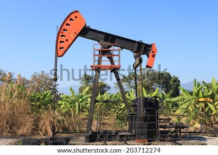 Oil Pump Jack (Sucker Rod Beam) in The Banana Field on Sunny Day - stock photo