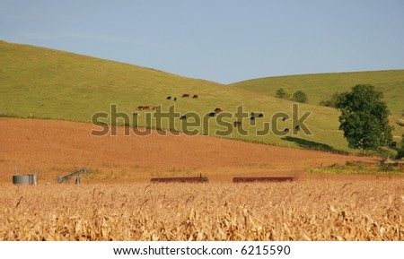 Oil Well and Farm Land
