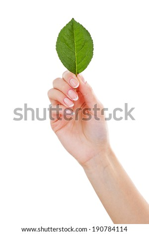 OK sign. Close-up of female hand gesturing OK sign while isolated on white