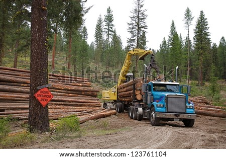 OKANOGAN, WASHINGTON - AUGUST 31:  Commercial lumbering operations are shown on August 31, 2010 in the Okanogan National Forest, Washington state.