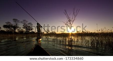 Okavango Delta Sunset - stock photo