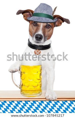 oktoberfest dog with bavarian beer mug