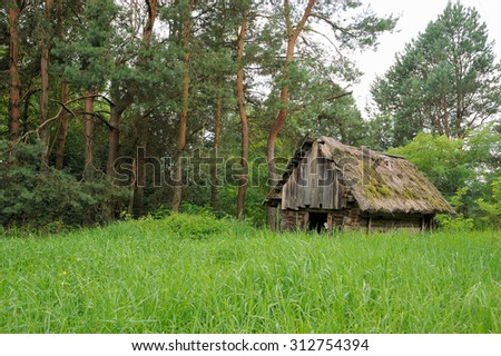 Old abandoned barn on the edge of the forest in summer - stock photo