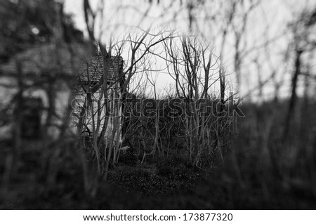 Old abandoned house in the woods and blurry trees. Black and white. - stock photo