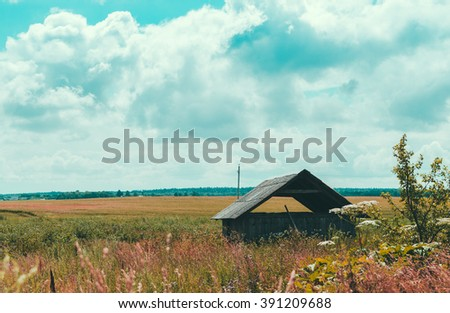 Old abandoned house in village on the summer field - stock photo