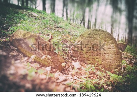 Old abandoned jewish cemetery in forest - stock photo