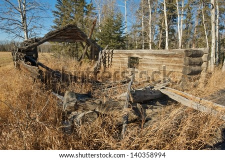 old abandoned log barn, in tall dead grass - stock photo