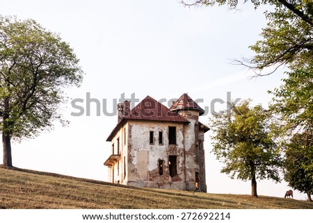 Old, abandoned, ruined house in the field with trees and horse - stock photo