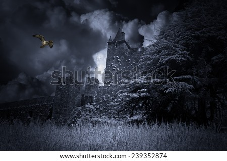 Old and mysterious medieval castle with eagle passing by - stock photo